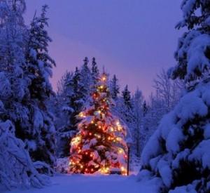 winter-christmas-snow-02